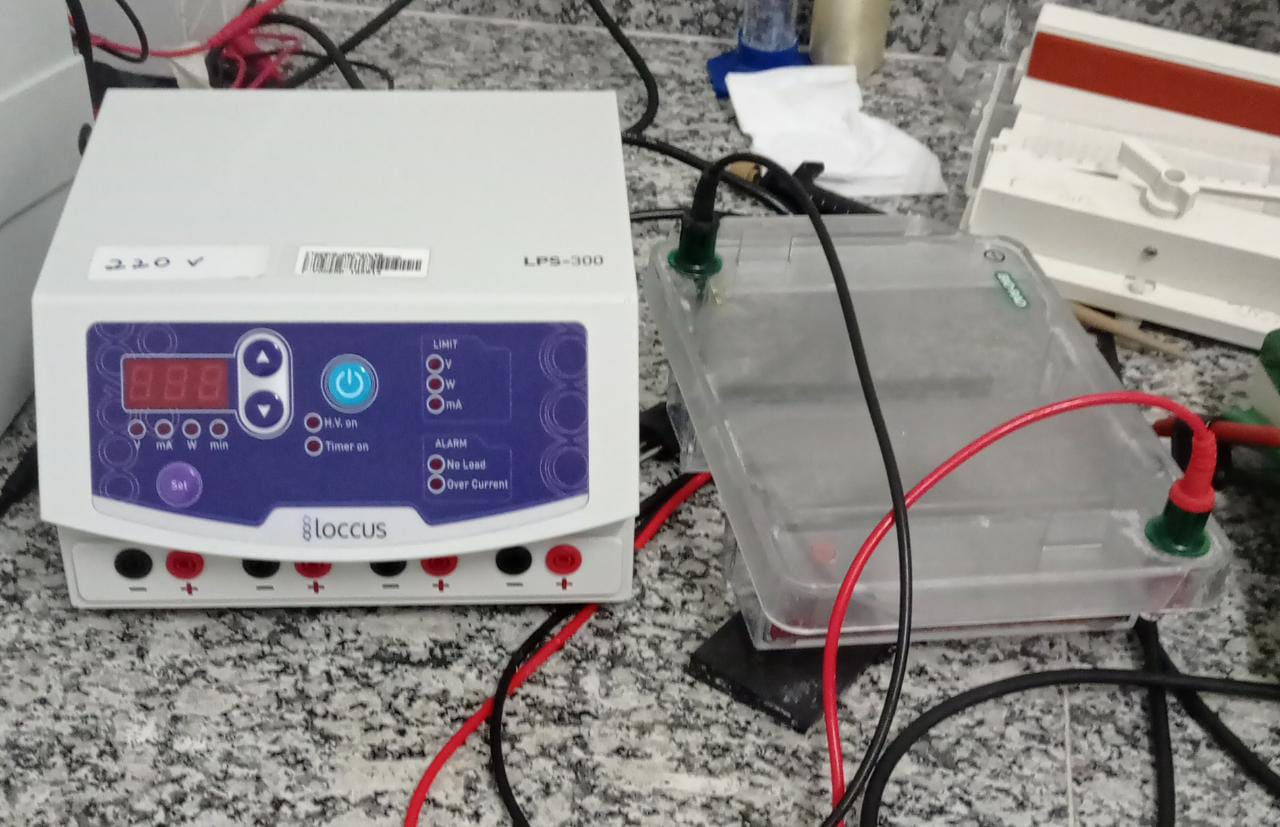 Fonte de cuba eletroforese